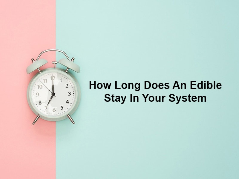 How Long Does an Edible Stay in Your System?