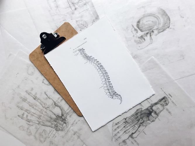 Chiropractic Pain Relief: How True Is It